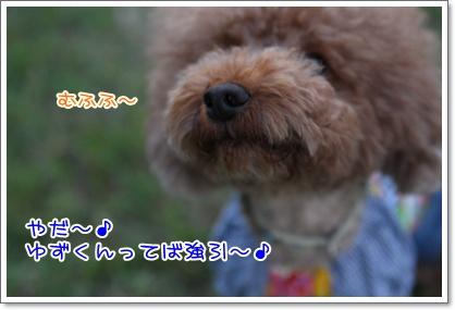 16_20090923233131.jpg