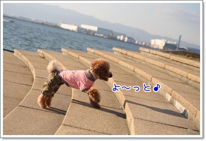 16_20091013205055.jpg