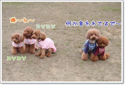 16_20091025231610.jpg