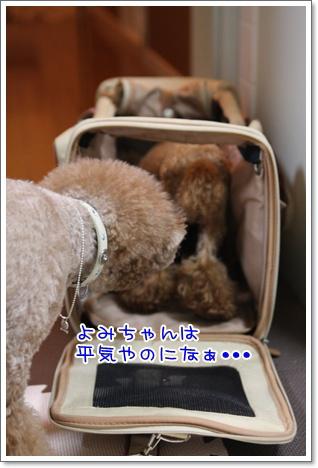 17_20091027185653.jpg