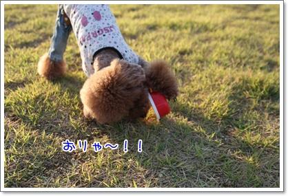 18_20091011113846.jpg