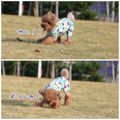 19_20090831001644.jpg