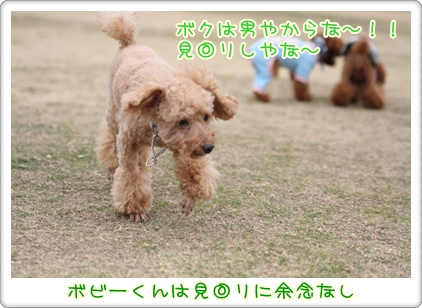 19_20091025224325.jpg