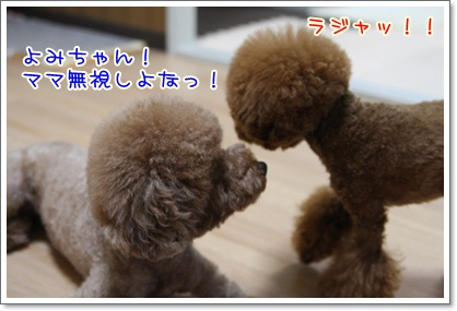 1_20090805221555.jpg