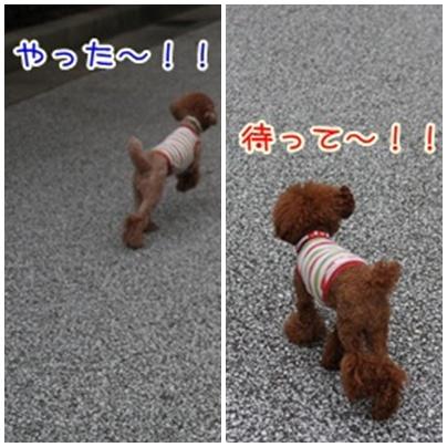 1_20090809004712.jpg