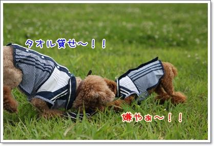 20_20090726231627.jpg