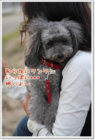 20_20090923235227.jpg