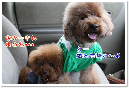 20_20090927202443.jpg