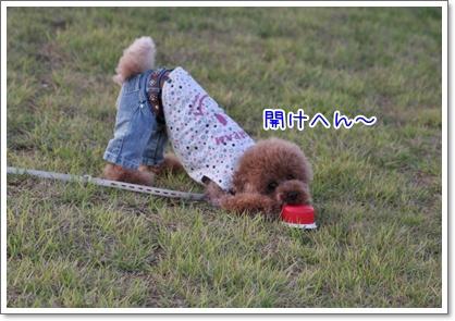20_20091011115702.jpg