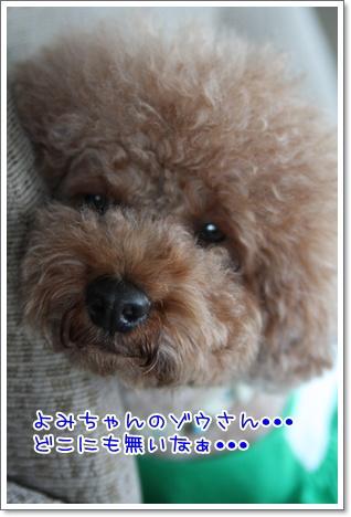 23_20090927202443.jpg