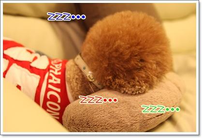 23_20091102005528.jpg