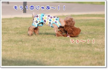 26_20090831002422.jpg
