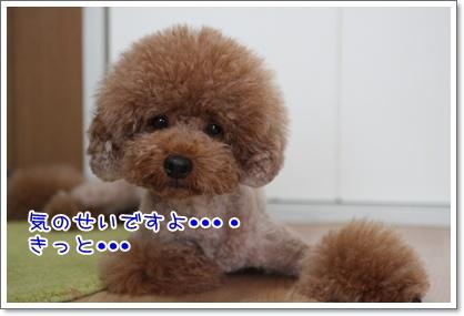 2_20090904210034.jpg