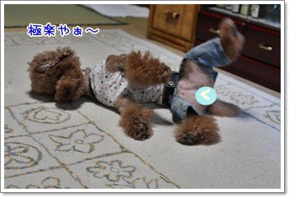2_20091010235703.jpg
