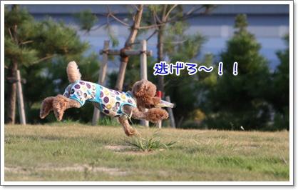 32_20090831003142.jpg