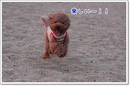 3_20090809004712.jpg