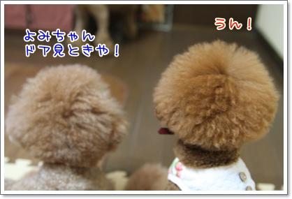3_20090817011926.jpg