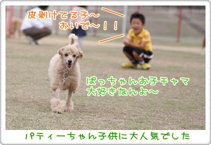 3_20091025224325.jpg