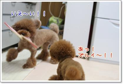 4_20090810222133.jpg