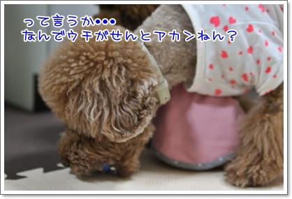 4_20090926002622.jpg