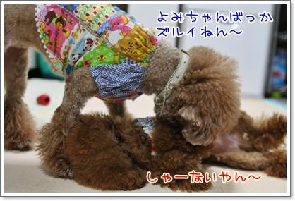5_20091005222214.jpg