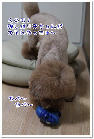 6_20090910184447.jpg