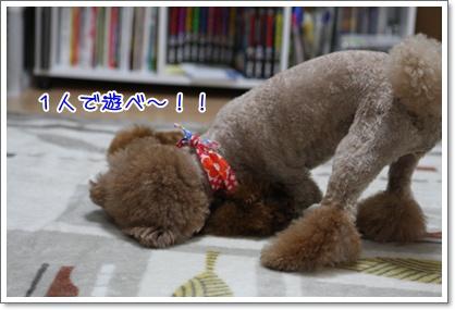 6_20091002002551.jpg