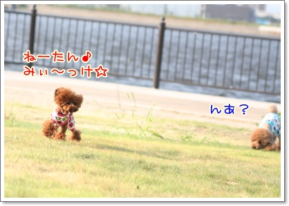 7_20090831000047.jpg
