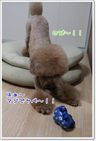 7_20090910185817.jpg