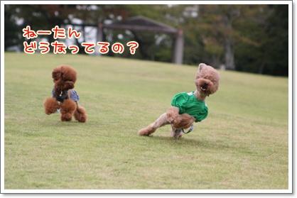 7_20090927200601.jpg