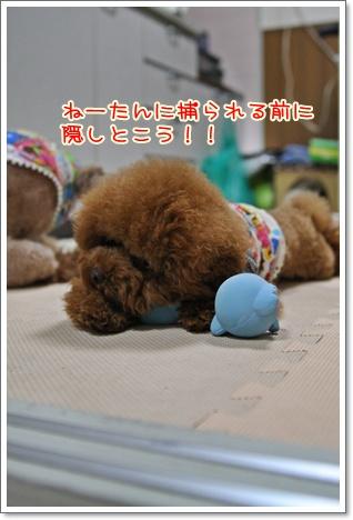 7_20091005223320.jpg