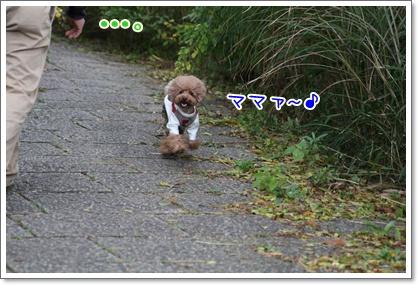 7_20091103235231.jpg