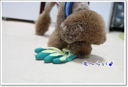 8_20090725010417.jpg