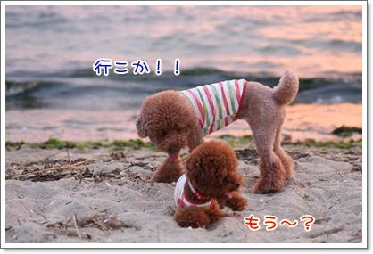 8_20090809005335.jpg