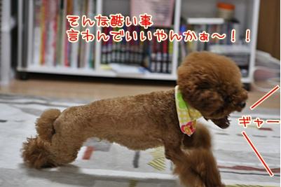 8_20091002003107.jpg