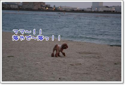 9_20090809005335.jpg