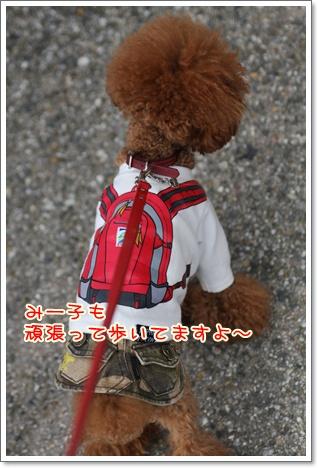9_20091103235231.jpg