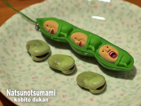 1107natsunotsumami05
