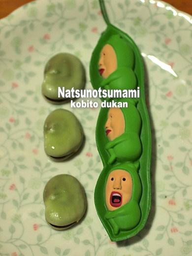 1107natsunotsumami06