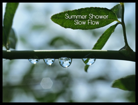 1108summershower01