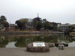 sarusawa0213_convert_20120213113121.jpg