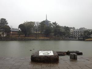 sarusawa0214_convert_20120214104635.jpg