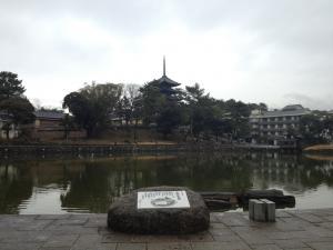 sarusawa0215_convert_20120215110041.jpg