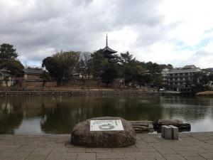 sarusawa0218_convert_20120218105252.jpg