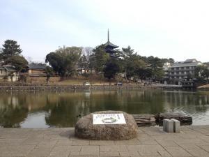 sarusawa0222_convert_20120222105759.jpg