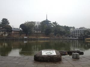 sarusawa0225_convert_20120225105237.jpg