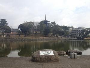 sarusawa0227_convert_20120227110955.jpg