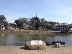 sarusawa0228_convert_20120228104845.jpg