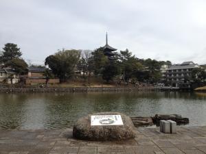 sarusawa0229_convert_20120229112259.jpg