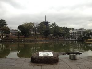 sarusawa0306_convert_20120306110622.jpg